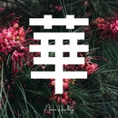 華/ASIAN HEALING