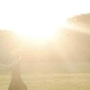 陽の当たる散歩道/Cornel