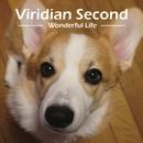 Viridian Second - Wonderful Life -/Viridian
