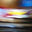 CAVINET/山本精一