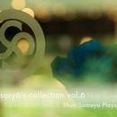saryo's collection vol.6 Shun Someya Plays/染谷俊
