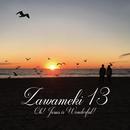 Zawameki13 Oh! Jesus is Wonderful!/Zawameki
