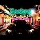 Money In My Pocket Feat. NaNa/Zeebra