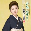 山本みゆき 最新ヒット全曲集2009/山本 みゆき