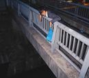 橋の上で/THE 真心ブラザーズ