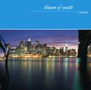 サルヴェージュ/Bluem of Youth
