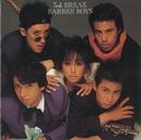 3rd. BREAK/BARBEE BOYS