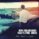 AKA... What A Life!/Noel Gallagher's High Flying Birds