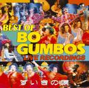 ずいきの涙 ~BEST OF BO GUMBOS LIVE RECORDINGS~/BO GUMBOS