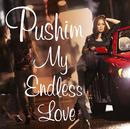 My Endless Love/PUSHIM