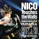 夏の大三角形2012LIVE IN MAKUHARI/NICO Touches the Walls