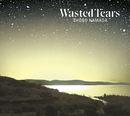 WASTED TEARS/浜田 省吾