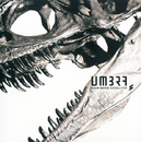 UMBRA/BOOM BOOM SATELLITES