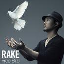 Free Bird/Rake