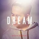 DREAM/清水 翔太