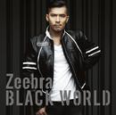 Black World/White Heat/Zeebra