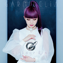 Linkage Ring/GARNiDELiA