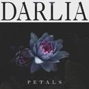 Stars Are Aligned/Darlia