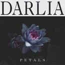 Petals/Darlia
