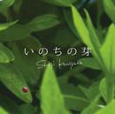 いのちの芽/国安 修二