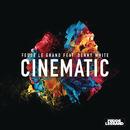 Cinematic feat. Denny White (Radio Edit)/Fedde Le Grand