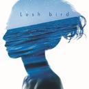 Lush/bird
