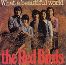 WHAT A BEAUTIFUL WORLD/赤い鳥