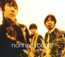 WILDFLOWER/northern bright