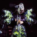Vulnicura: Live/Björk