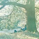 Yoko Ono/Plastic Ono Band/Yoko Ono
