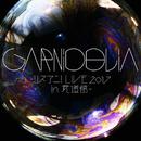GARNiDELiA ~リスアニ!LIVE 2017 in  武道館~/GARNiDELiA