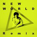 NEW WORLD [KSUKE Remix]/橋本 裕太