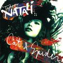 CAT & SPIDER/Typhoon NATALi
