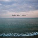 Water Lily Flower/フジファブリック