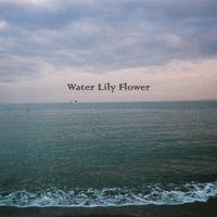 【主題歌】Water Lily Flower