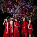 紅のドレス/Flower