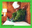 sabotage -acoustic ver.-/緑黄色社会