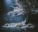 春はゆく / marie/Aimer