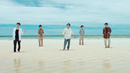 IN THE SUMMER/嵐