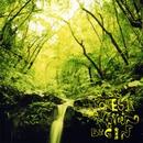 Forest Green/BEGIN