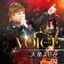 VOICE/天童 よしみ
