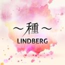 ~種~/LINDBERG