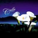 PIECE OF MY WISH/Calla