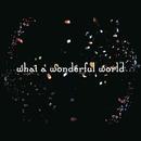 What A Wonderful World/Salyu