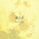 蜜の月 -for the film-/SEKAI NO OWARI
