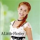 舞風DS「A Little Flower」/宝塚歌劇団
