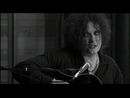 Friday I'm In Love (Video (Acoustic Version))/The Cure