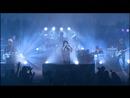 雪蛍(冬ツアー2009「ウツセミ」2009年1月30日)/プラスティック トゥリー