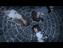 ユキラブ/Juliet