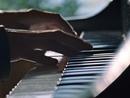 Narrow Daylight/Diana Krall